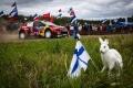El calendario de 2020 del WRC se aclara, aun sin borrador