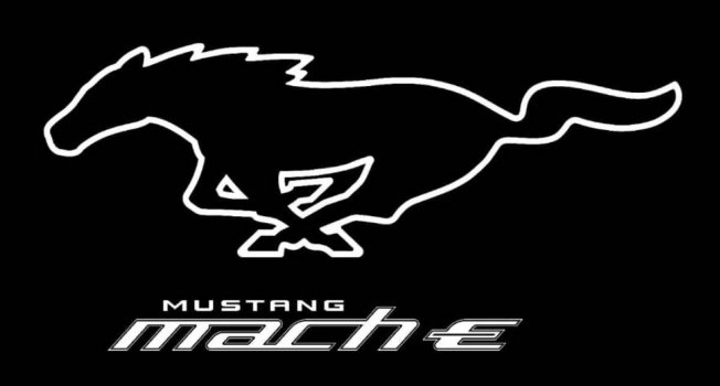 2020 Ford Mustang Mach-E 25