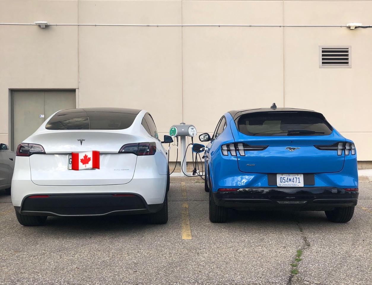 Comparativa visual: el nuevo Ford Mustang Mach-E junto al Tesla Model Y por primera vez