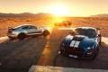 Los Ford Mustang y Shelby GT500 estrenan novedades en 2021