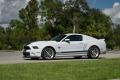 Pieza única: el prototipo original del Shelby GT500 Super Snake de 2014 aparece a la venta